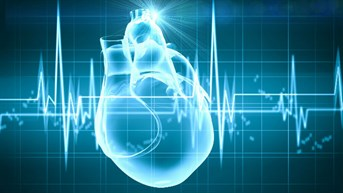 Report Monitors Heart Health Worldwide