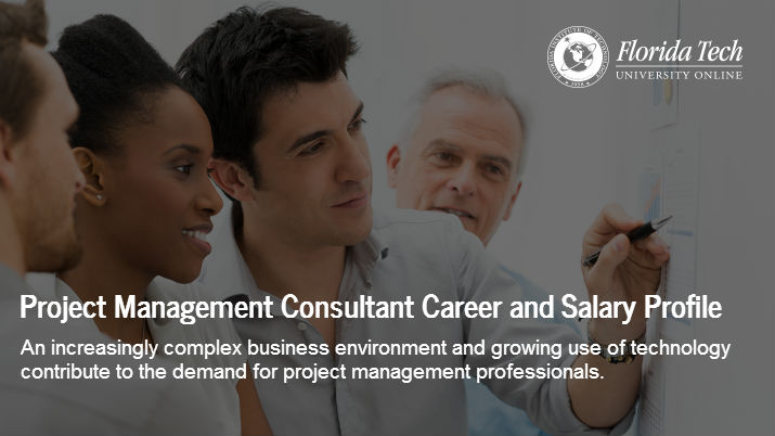 Project Management Consultant Career and Salary Profile