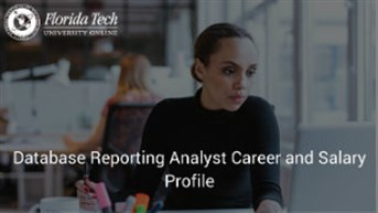 Database Reporting Analyst Career and Salary Profile