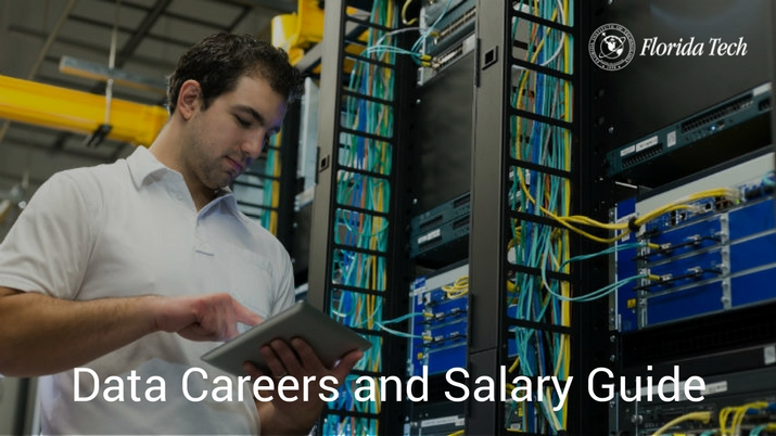 Data Careers and Salary Guide