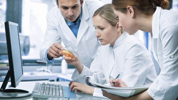 Information Technology in the Healthcare Industry