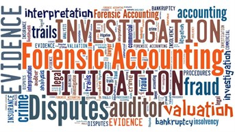 Mentor Program to Prepare Forensic Accountants